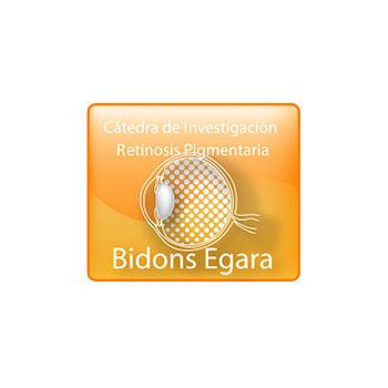 Cátedra de Investigación en Retinosis Pigmentaria Bidons Egara at the Universidad Miguel Hernández (UMH) of Elche and Ciber-BBN