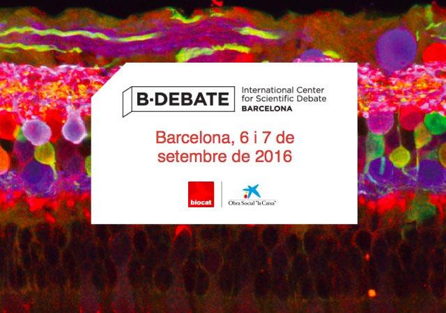 b-debate