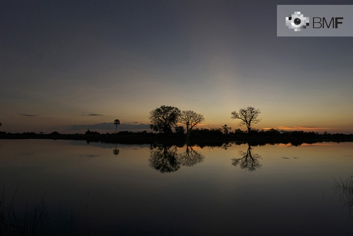 Broad landscape of a sunset on the Okabango Delta. The sun's reddish rays light up the profiles of three trees whose shadow is reflected in the river. It is the image of a reality and its shadow.