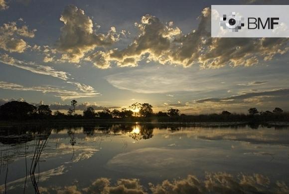 Vespreja, en un cel amb núvols, mentres els arbres s'amaguen més enllà de la llacuna. Cel, núvols i arbres es reflecteixen en les seves tranquil·les aigües.