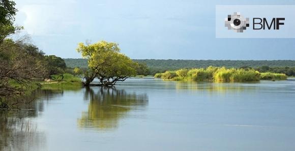 Un riu serè es distingeix del blau cel que el cobreix gràcies a la gran quantitat de vegetació que ho envolta i ho bifurca.