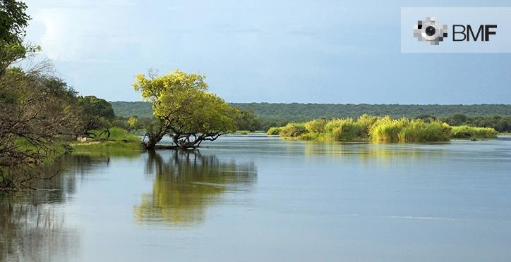 Un río sereno se distingue del azulado y despejado cielo que lo cubre gracias a la gran cantidad de vegetación que lo rodea y lo bifurca.