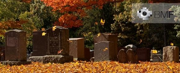 Un vent de tardor aixeca algunes fulles grogues que sembla que ballin entre la quietud de les tombes dels que ja no hi són. El fotograf es troba en un cementiri envoltat per arbres i un terra ple de fulles grogues.