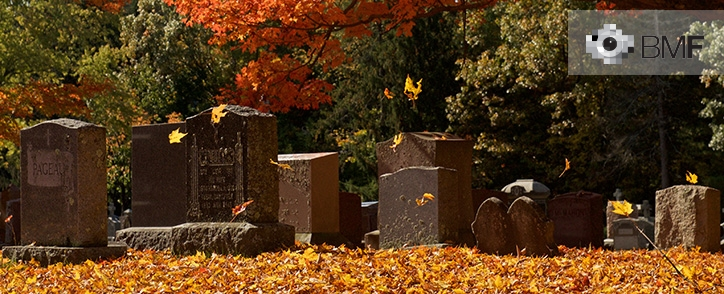An autumnal wind raises some yellow leaves that seem to be dancing before the stillness of the graves of those who are no more. The photographer is in a cemetery surrounded by trees and with the ground full of yellow leaves.