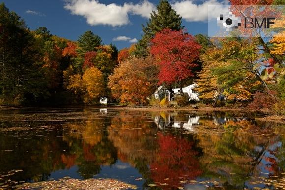 Una llacuna reflecteix el colorit paisatge format per grans i alts arbres vermellosos, ataronjats i verds. Darrera d'aquesta explosió de tardor, es deixa veure una petita casa blanca típica de Nova Anglaterra.