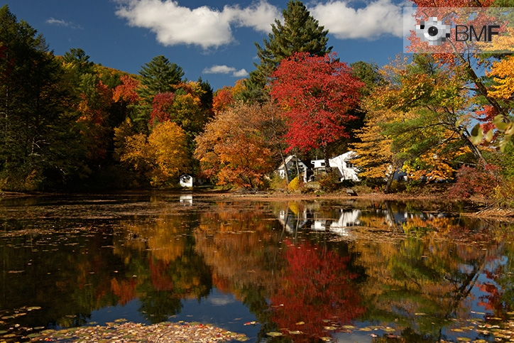 A lagoon reflects the colourful landscape comprising large, tall, reddish, orangish and green trees. Behind this autumnal explosion, a small white house typical of New England can be spotted.