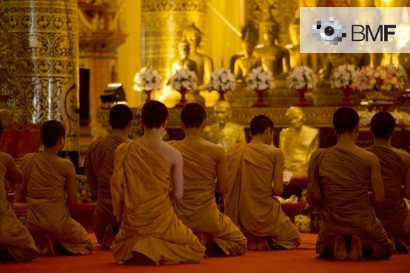 Ten Buddhist monks keep their back to the photographer while they pray. The image projects a climate of spirituality and calm. In the background, we see an altar with golden Buddhas surrounded by lilac flowers.