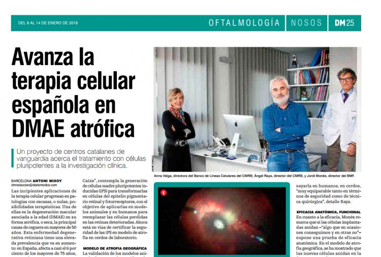 La BMF y prestigiosos centros científicos catalanes colaboran con el ...